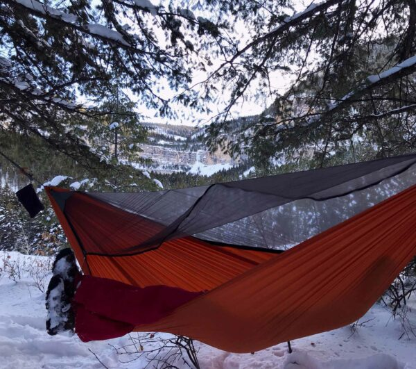 red Backwoods Pro Hammockwith bug net in the snow.